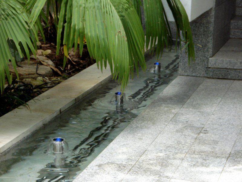 Mushroom Water Spouts