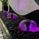 Mushroom Water Spouts Black